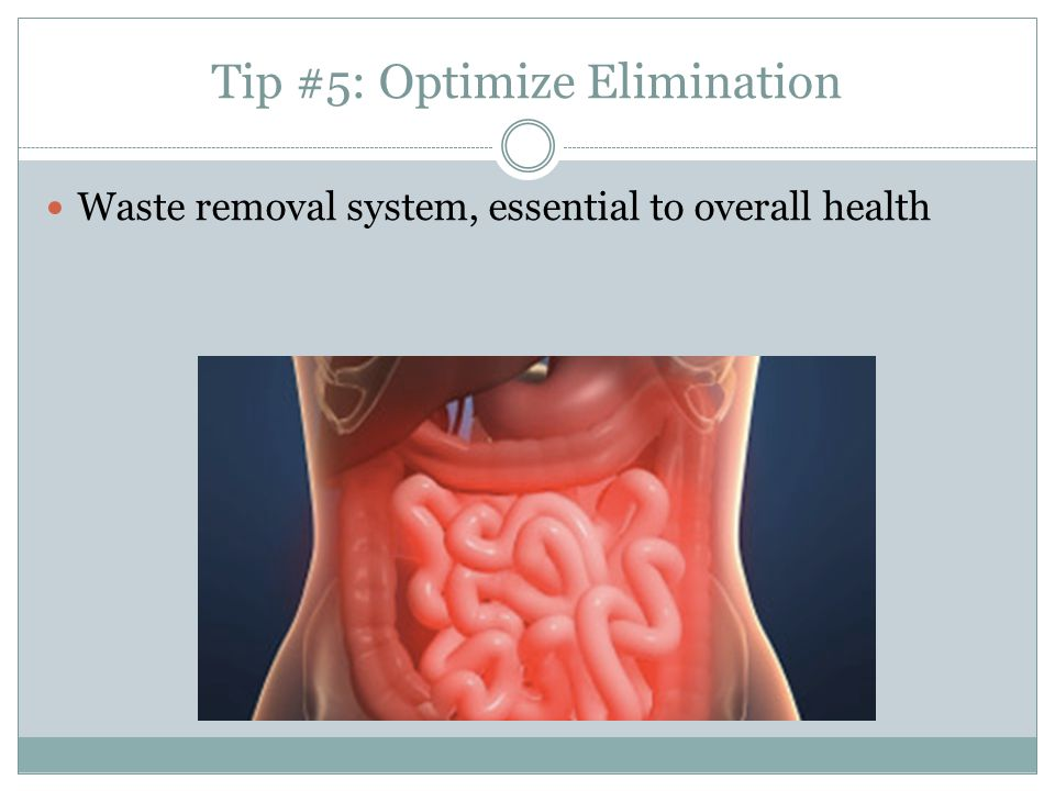 Tip #5: Optimize Elimination Waste removal system, essential to overall health
