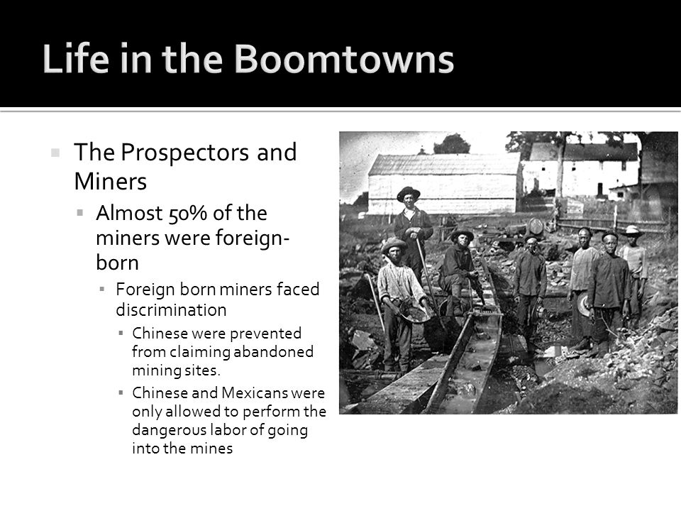  The Prospectors and Miners  Almost 50% of the miners were foreign- born ▪ Foreign born miners faced discrimination ▪ Chinese were prevented from claiming abandoned mining sites.
