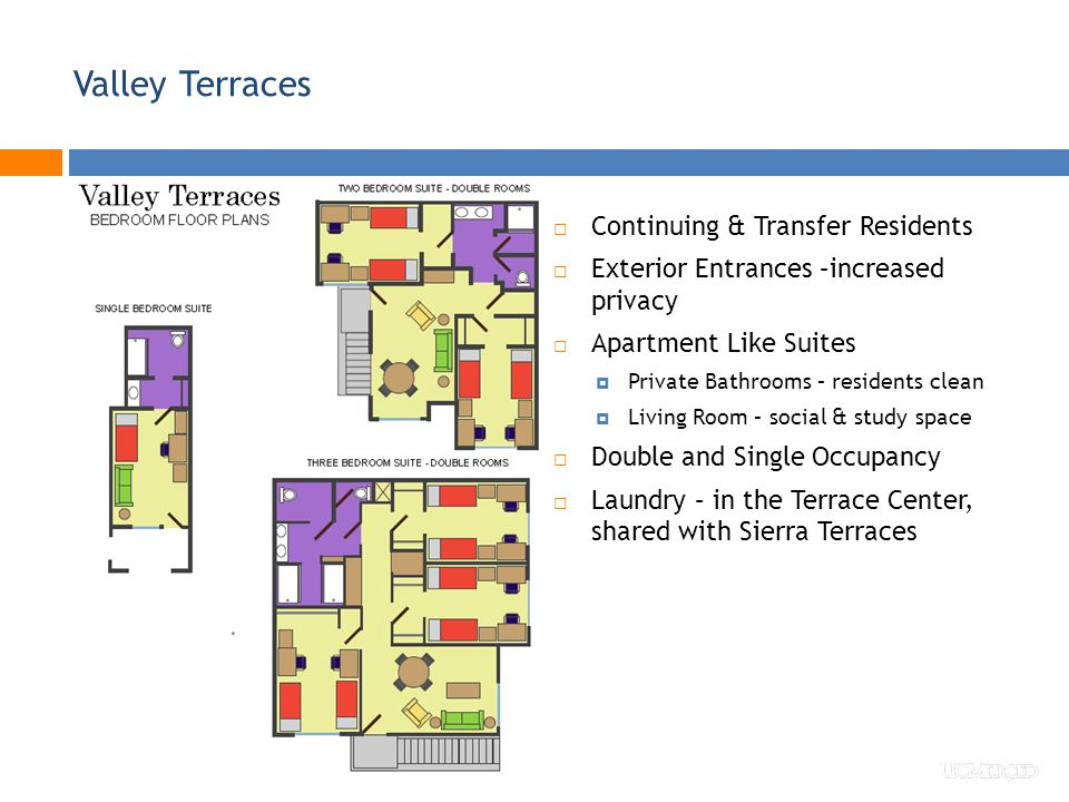 Valley Terraces  Continuing & Transfer Residents  Exterior Entrances –increased privacy  Apartment Like Suites  Private Bathrooms – residents clean  Living Room – social & study space  Double and Single Occupancy  Laundry – in the Terrace Center, shared with Sierra Terraces