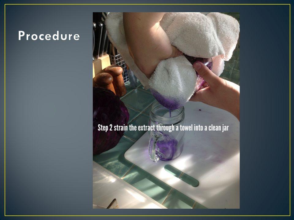 White Vinegar – pH 3 (Acid) Ammonia – pH 9 (Base) Baking Soda – pH 11 (Strong Base) Windex – pH 8 (Weak Base) Laundry Detergent – pH 11 (Strong Base) Soft Soap 'Sea Minerals' Hand Soap – pH 6 (Weak Acid) Simply Limeade Juice – pH 1 (Strong Acid)