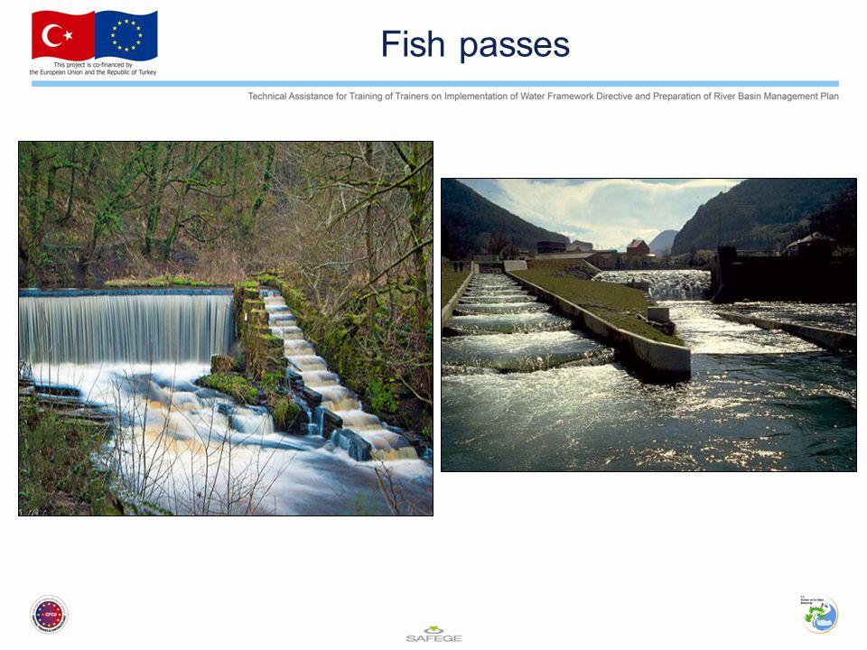 Fish passes