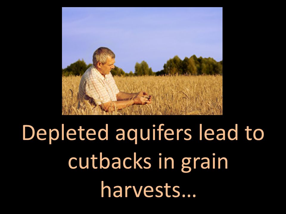 Depleted aquifers lead to cutbacks in grain harvests…
