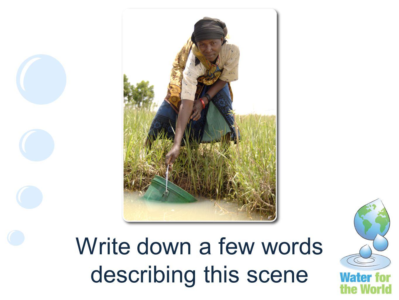 Write down a few words describing this scene