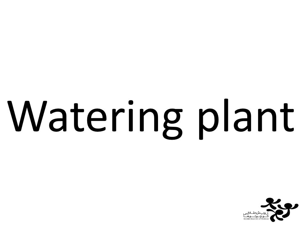 Watering plant