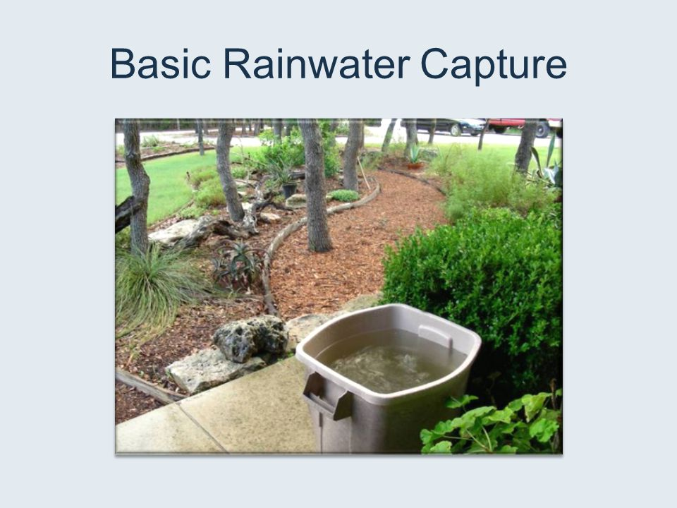 Basic Rainwater Capture