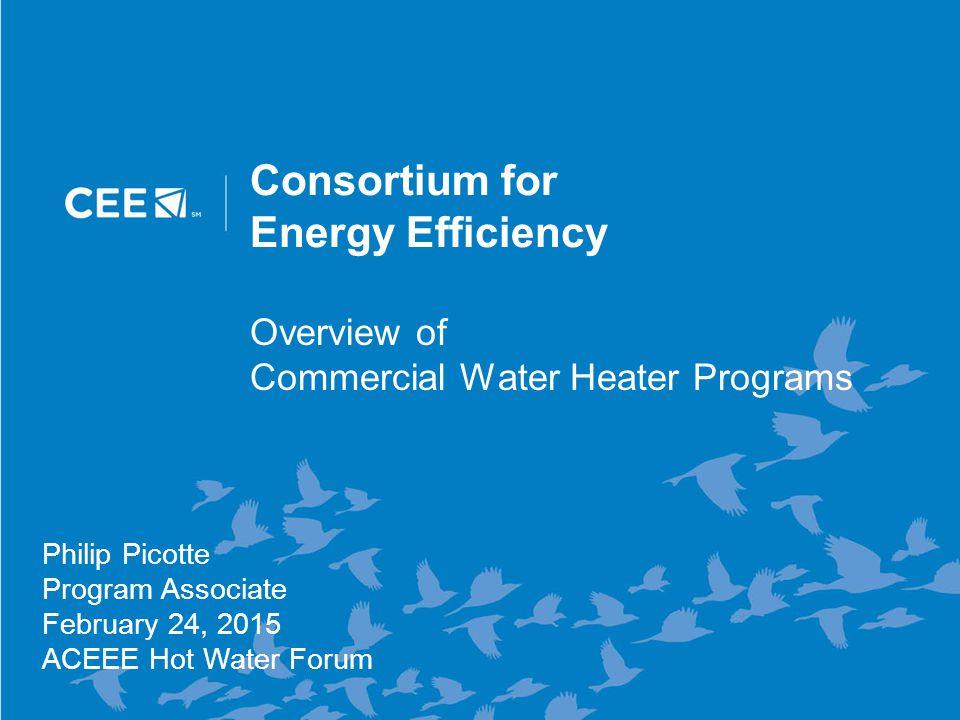 12 Residential Tankless Water Heaters Rebate Levels by EF Tier 1 ENERGY STAR