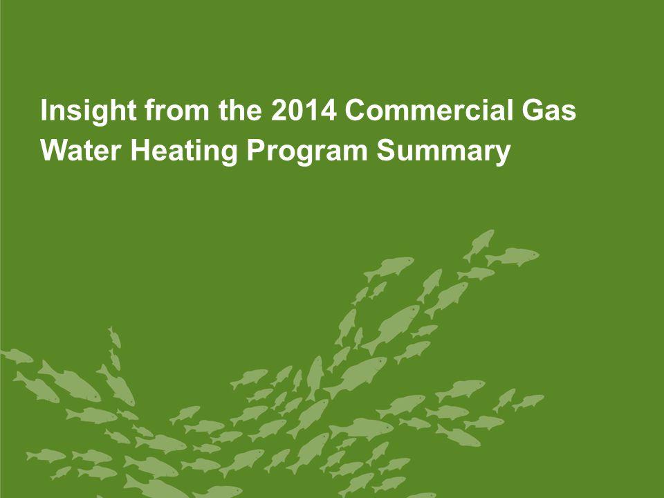 15 Summary Water Heater TypeMedian Efficiency Level Average Customer Rebate Programs Offering Rebate to Customers Comm.