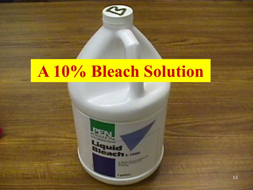 A 10% Bleach Solution 13