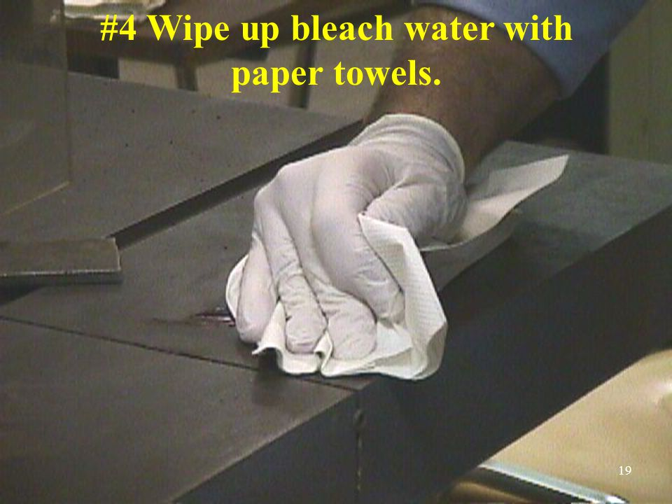 #4 Wipe up bleach water with paper towels. 19