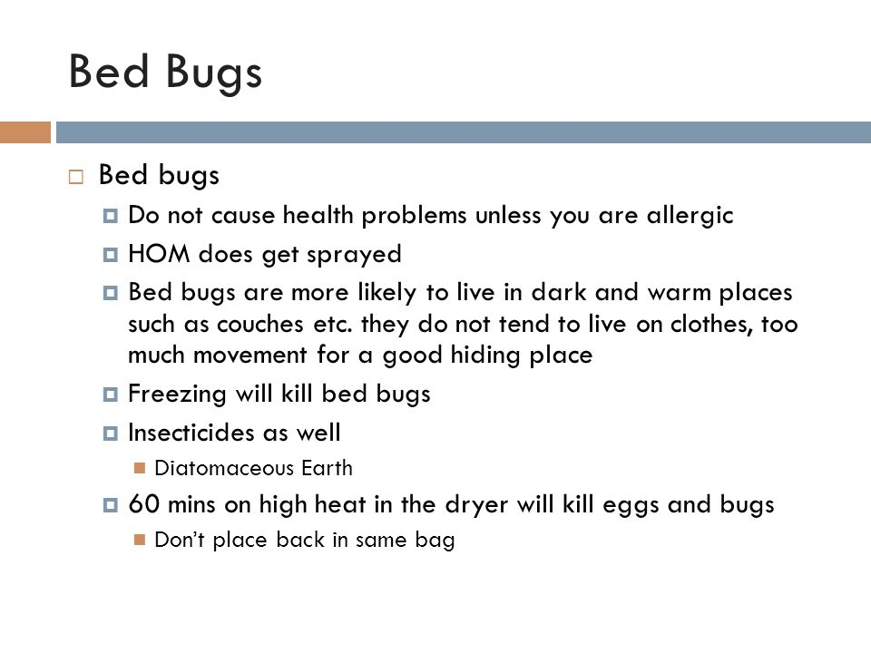 Bed Bugs  Bed bugs  Do not cause health problems unless you are allergic  HOM does get sprayed  Bed bugs are more likely to live in dark and warm places such as couches etc.