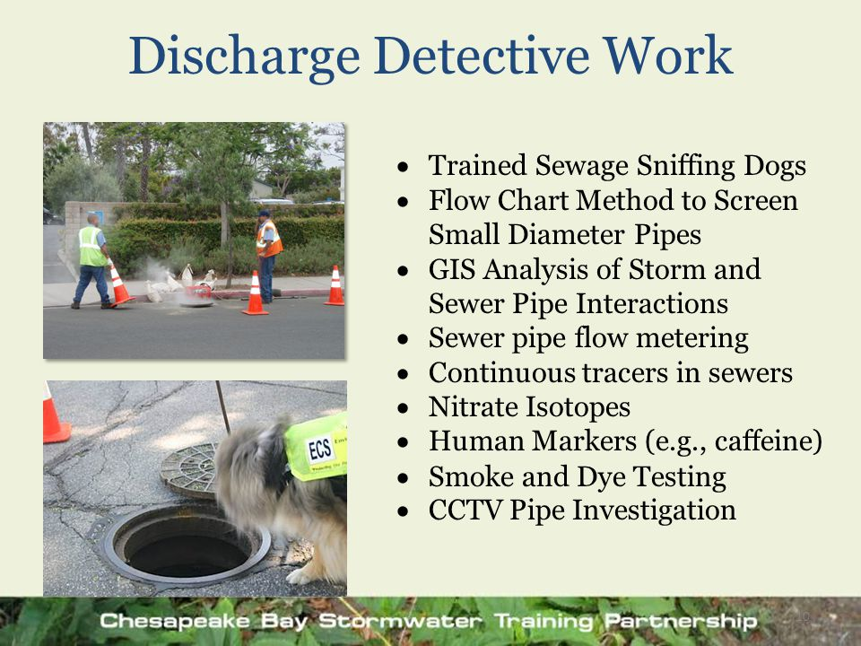 Discharge Detective Work 10  Trained Sewage Sniffing Dogs  Flow Chart Method to Screen Small Diameter Pipes  GIS Analysis of Storm and Sewer Pipe I