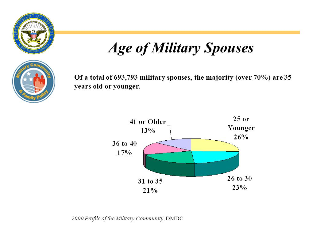 Army Enlisted Spouse Demographics  32% have completed high school but have no additional formal education and 13% have a bachelors degree or higher level of education.