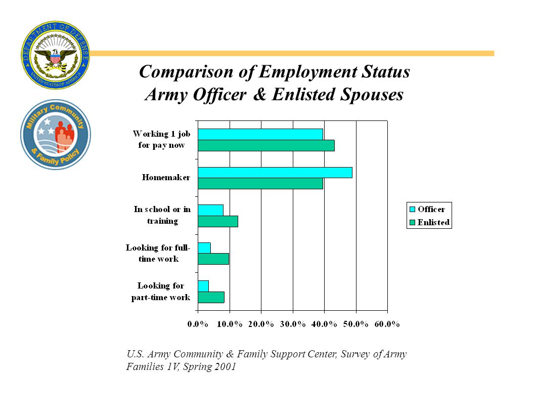 Reasons for Wanting or Needing to Work, by Paygrade (Percentage of responses marked very important ) 1997 Junior Enlisted Spouse Survey