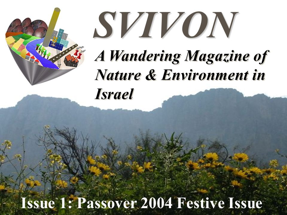 A Wandering Magazine of Nature & Environment in Israel SVIVON Issue 1: Passover 2004 Festive Issue