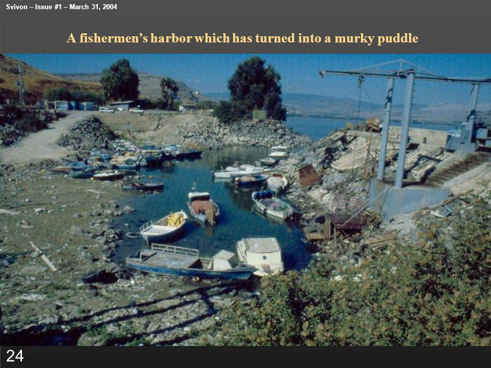 A fishermen's harbor which has turned into a murky puddle 24 Svivon – Issue #1 – March 31, 2004