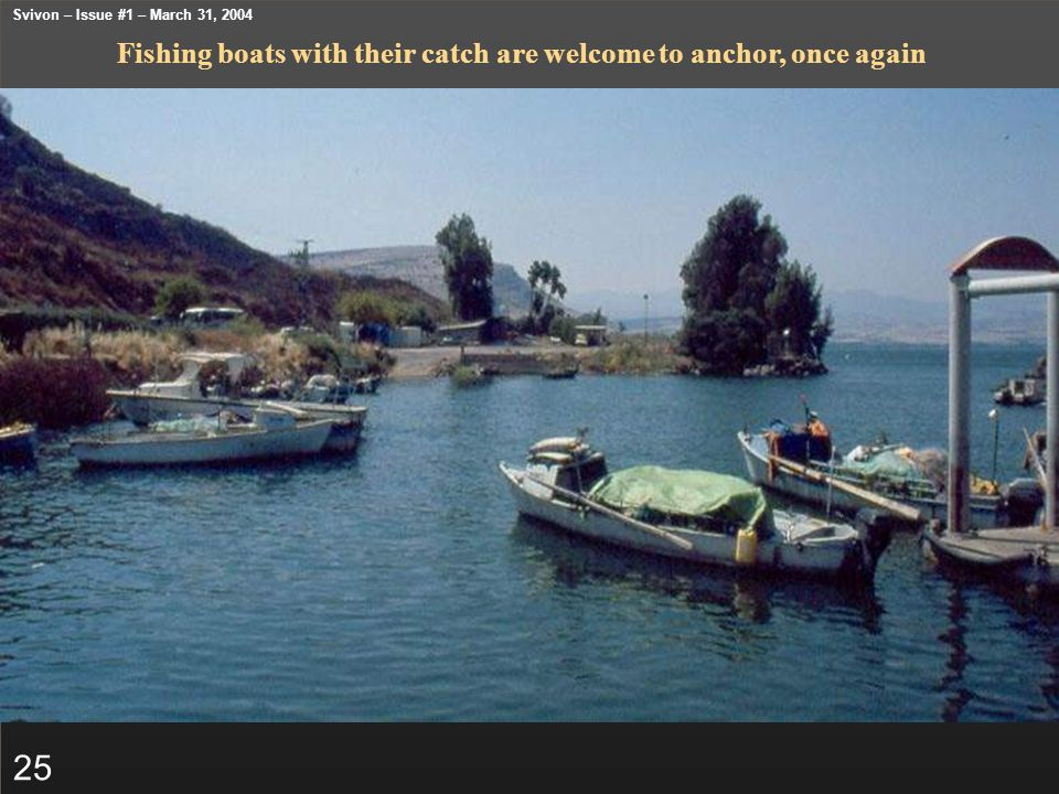 Fishing boats with their catch are welcome to anchor, once again 25 Svivon – Issue #1 – March 31, 2004