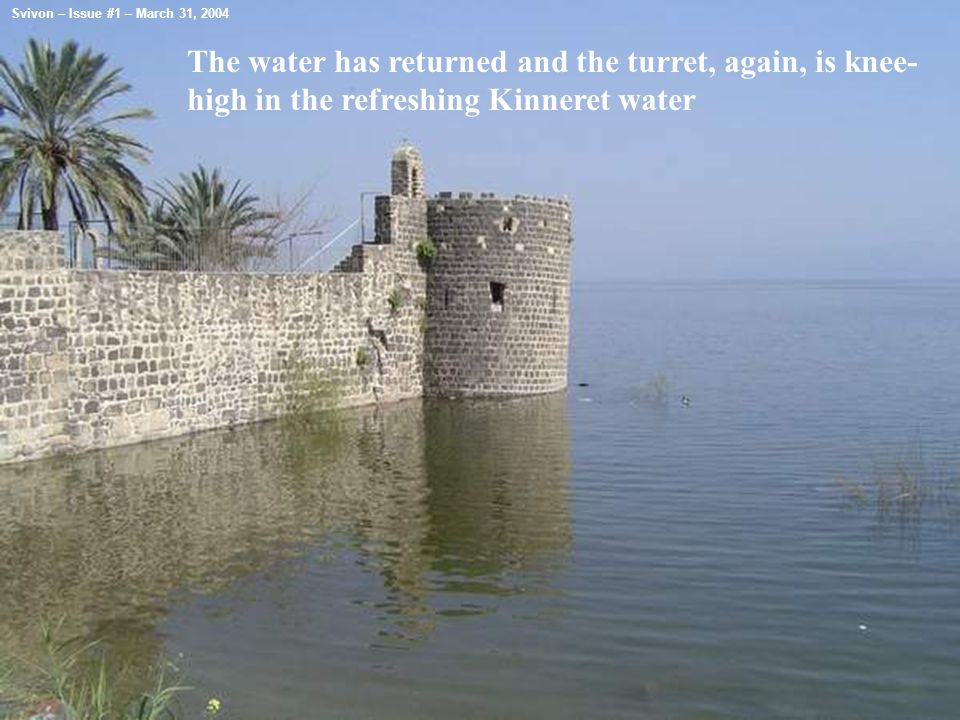 The water has returned and the turret, again, is knee- high in the refreshing Kinneret water Svivon – Issue #1 – March 31, 2004