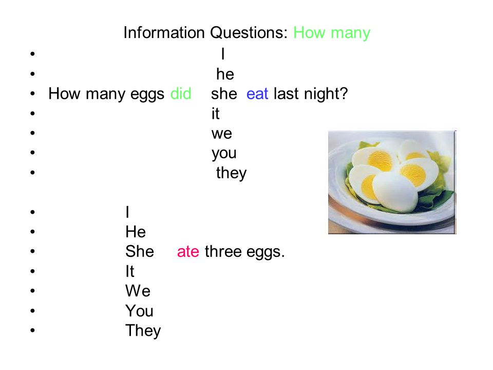 Information Questions: How many I he How many eggs did she eat last night.