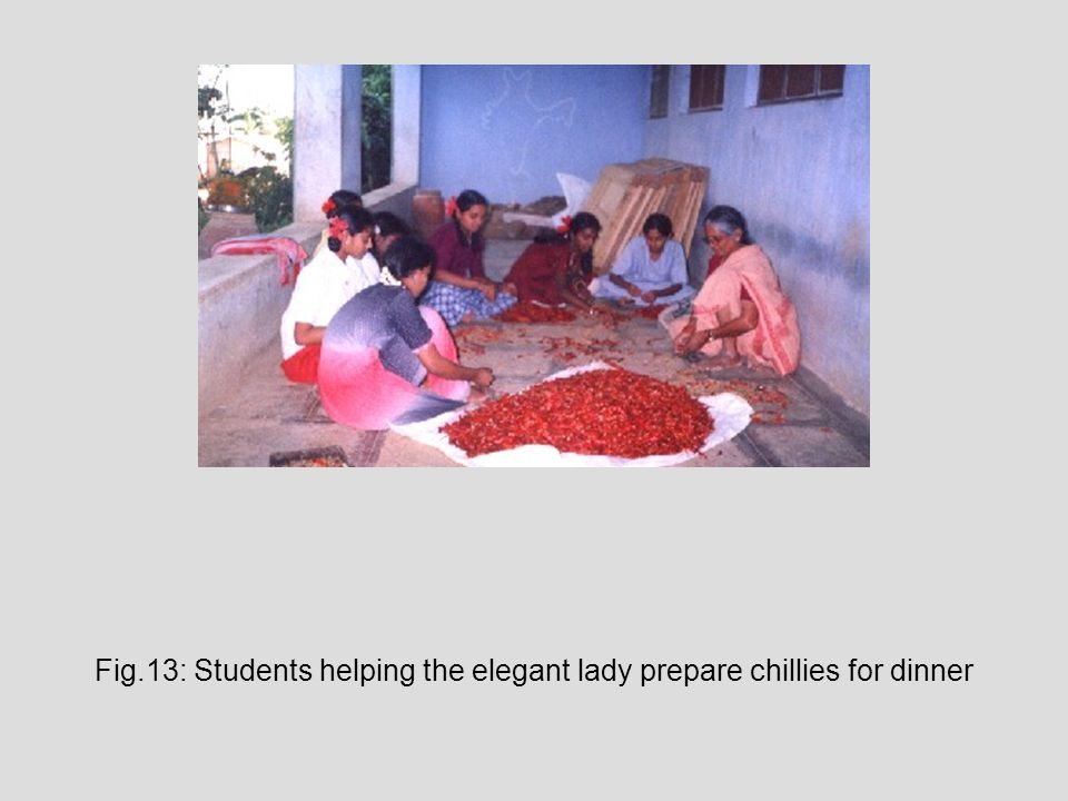 Fig.13: Students helping the elegant lady prepare chillies for dinner