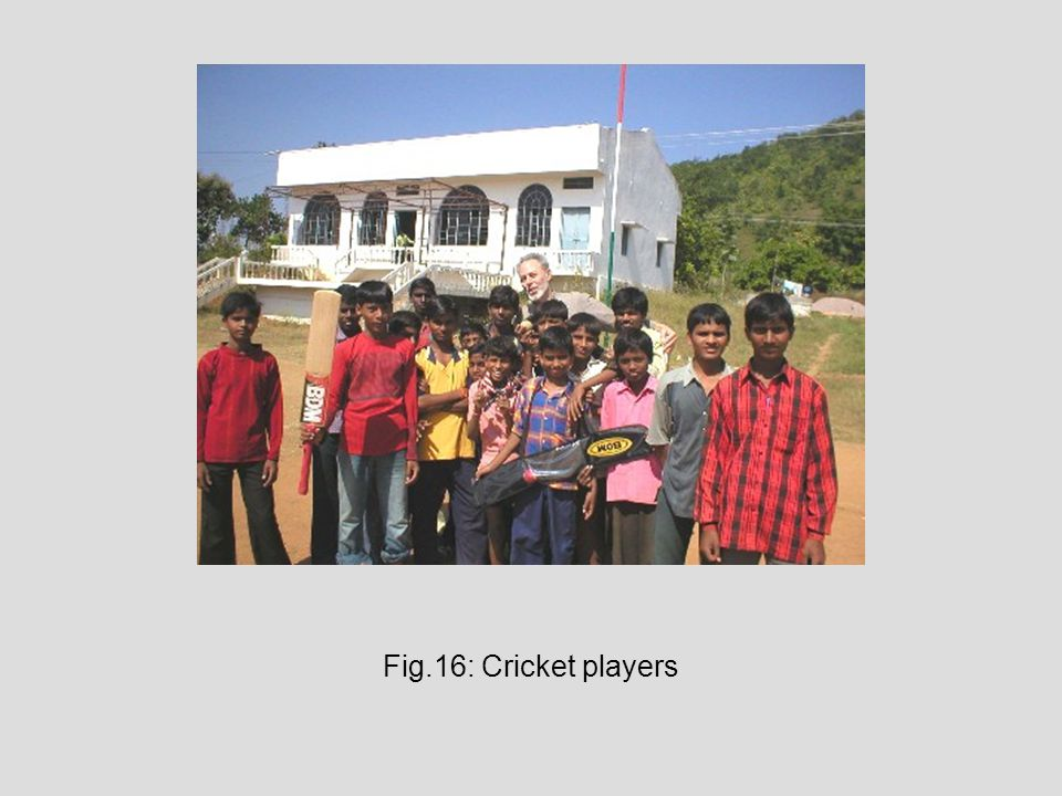 Fig.16: Cricket players