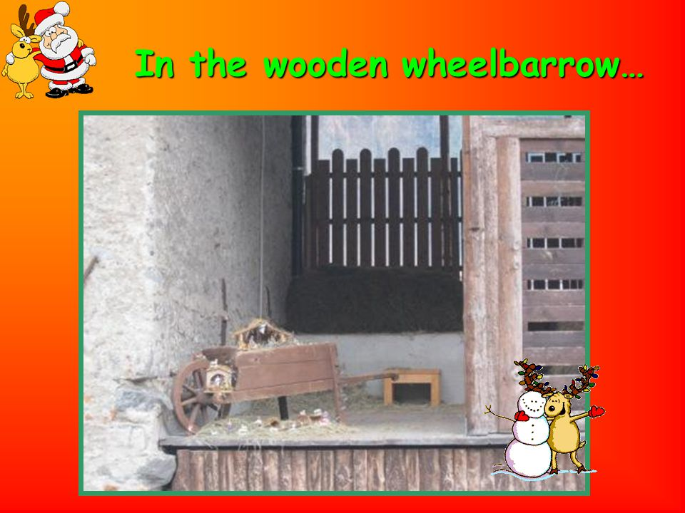 In the wooden wheelbarrow…