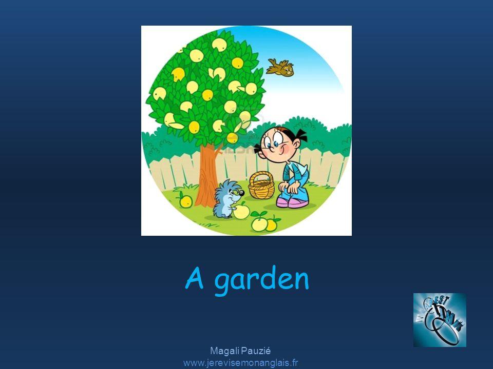 Magali Pauzié www.jerevisemonanglais.fr A garden