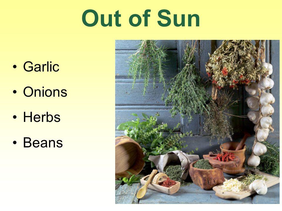 Out of Sun Garlic Onions Herbs Beans