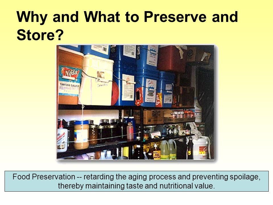 Why and What to Preserve and Store.