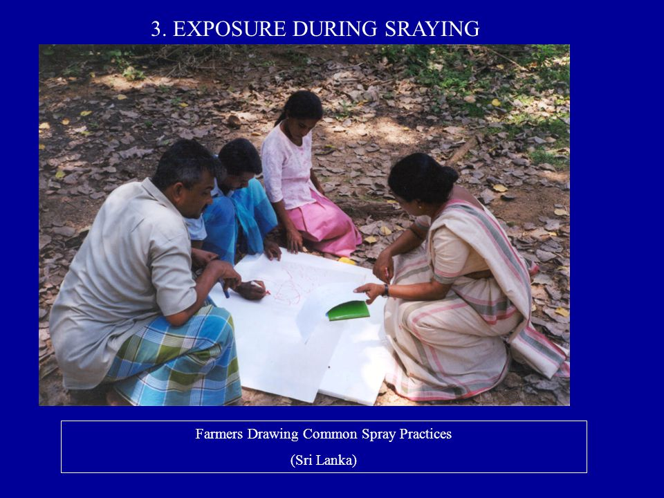Farmers Drawing Common Spray Practices (Sri Lanka) 3. EXPOSURE DURING SRAYING
