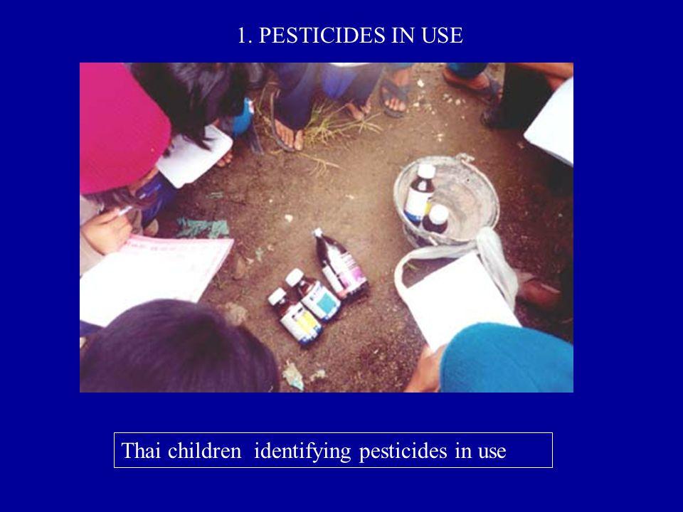 Thai children identifying pesticides in use 1. PESTICIDES IN USE