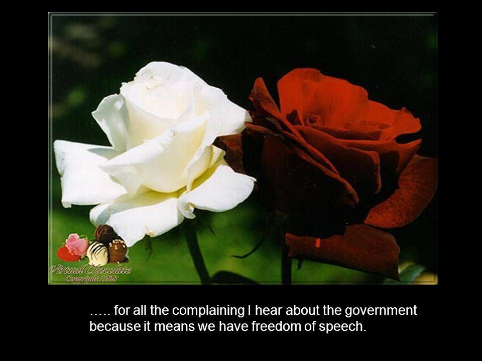 ….. for all the complaining I hear about the government because it means we have freedom of speech.