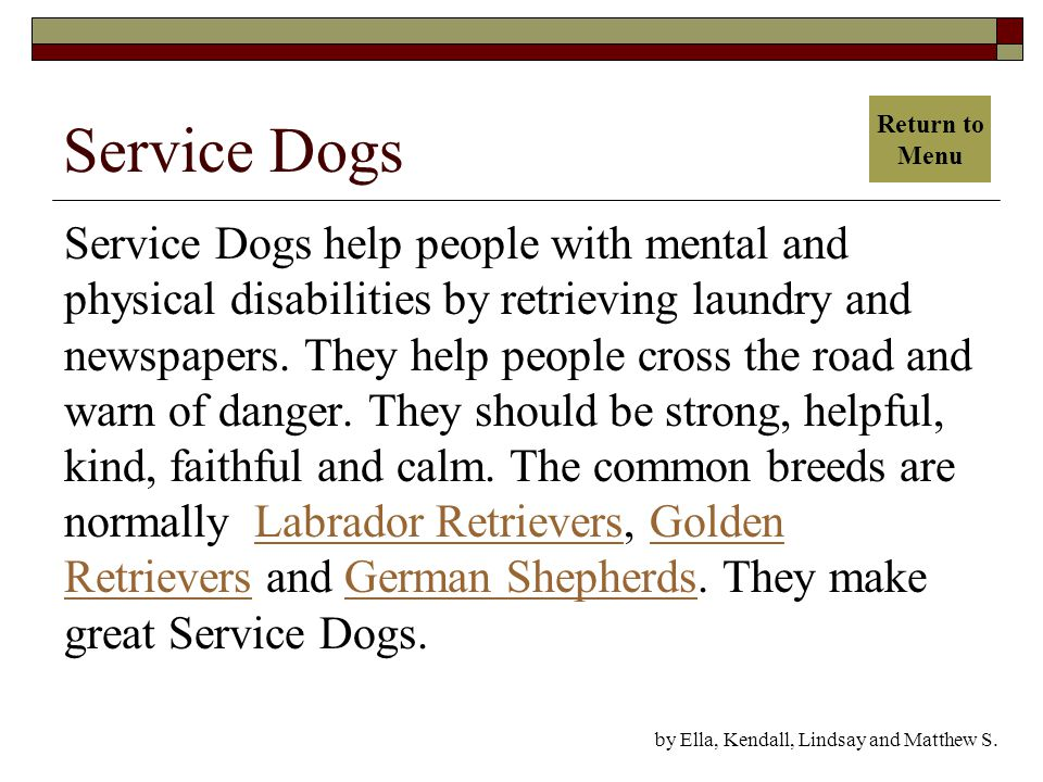 Service Dogs Service Dogs help people with mental and physical disabilities by retrieving laundry and newspapers.