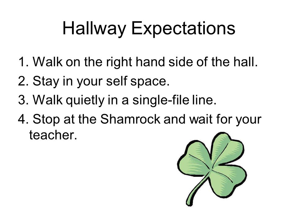 Hallway Expectations 1. Walk on the right hand side of the hall. 2. Stay in your self space. 3. Walk quietly in a single-file line. 4. Stop at the Sha