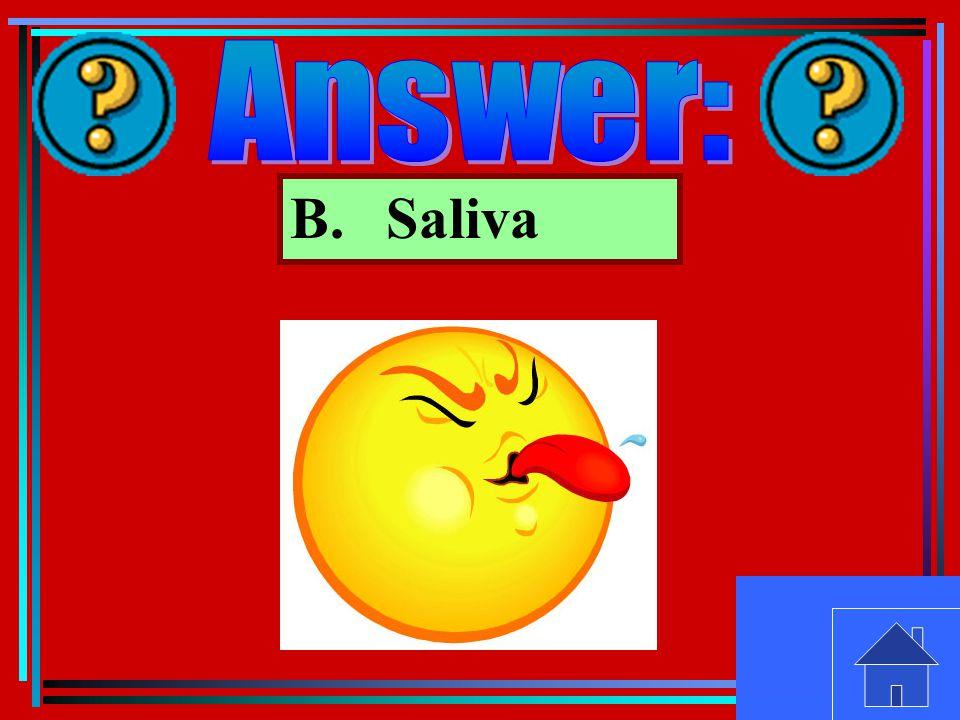 B.Saliva