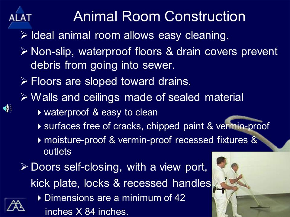 Animal Room Construction  Ideal animal room allows easy cleaning.
