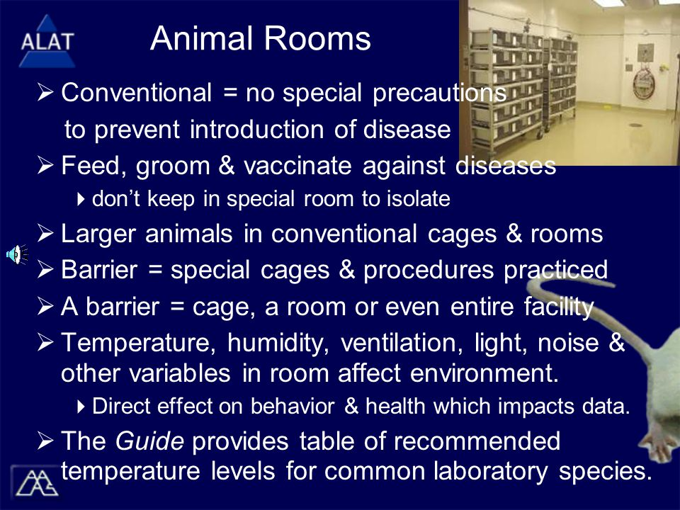 Animal Rooms  Conventional = no special precautions to prevent introduction of disease  Feed, groom & vaccinate against diseases  don't keep in special room to isolate  Larger animals in conventional cages & rooms  Barrier = special cages & procedures practiced  A barrier = cage, a room or even entire facility  Temperature, humidity, ventilation, light, noise & other variables in room affect environment.