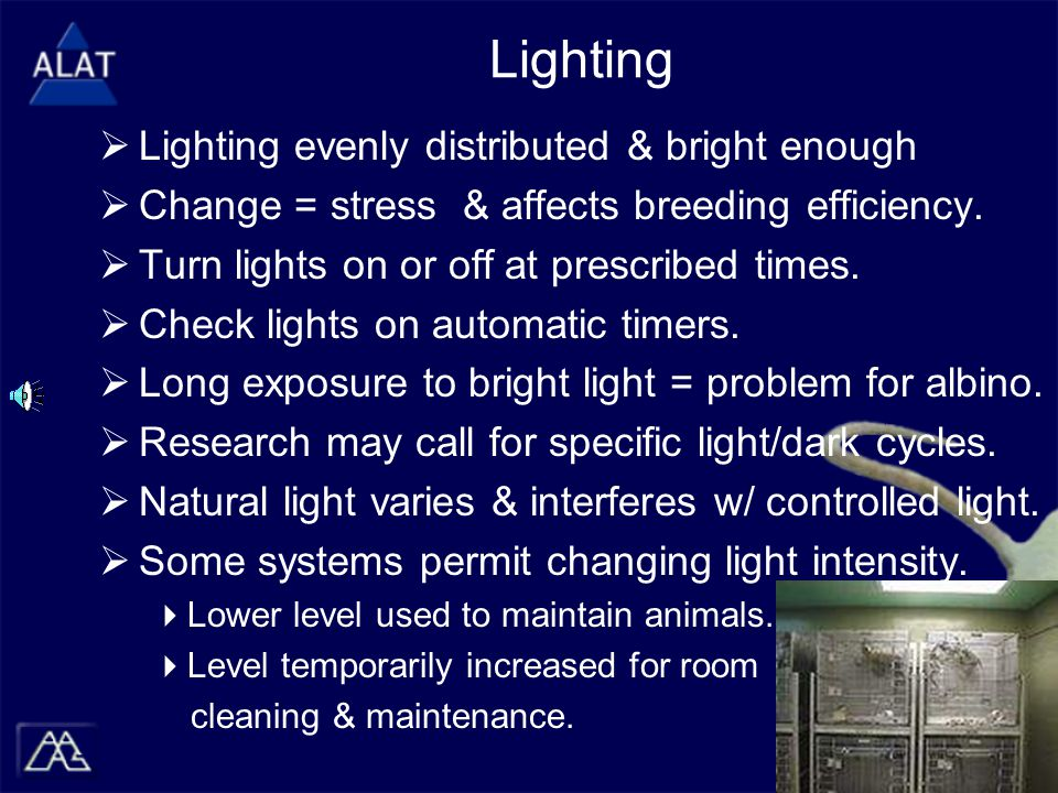 Lighting  Lighting evenly distributed & bright enough  Change = stress & affects breeding efficiency.