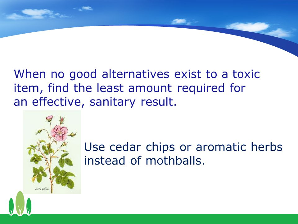 Use cedar chips or aromatic herbs instead of mothballs.