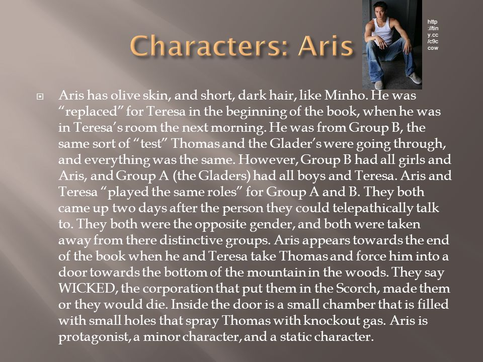  Aris has olive skin, and short, dark hair, like Minho.