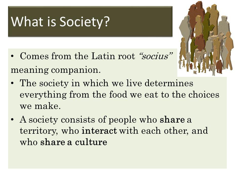 How do Societies Form.