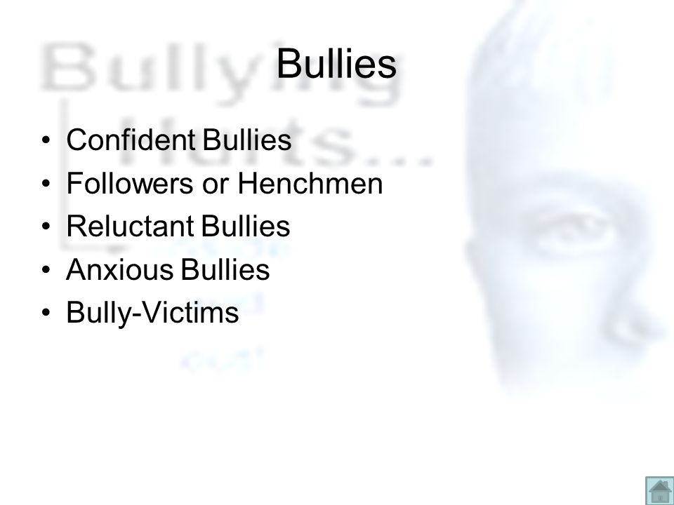 Bullies Confident Bullies Followers or Henchmen Reluctant Bullies Anxious Bullies Bully-Victims