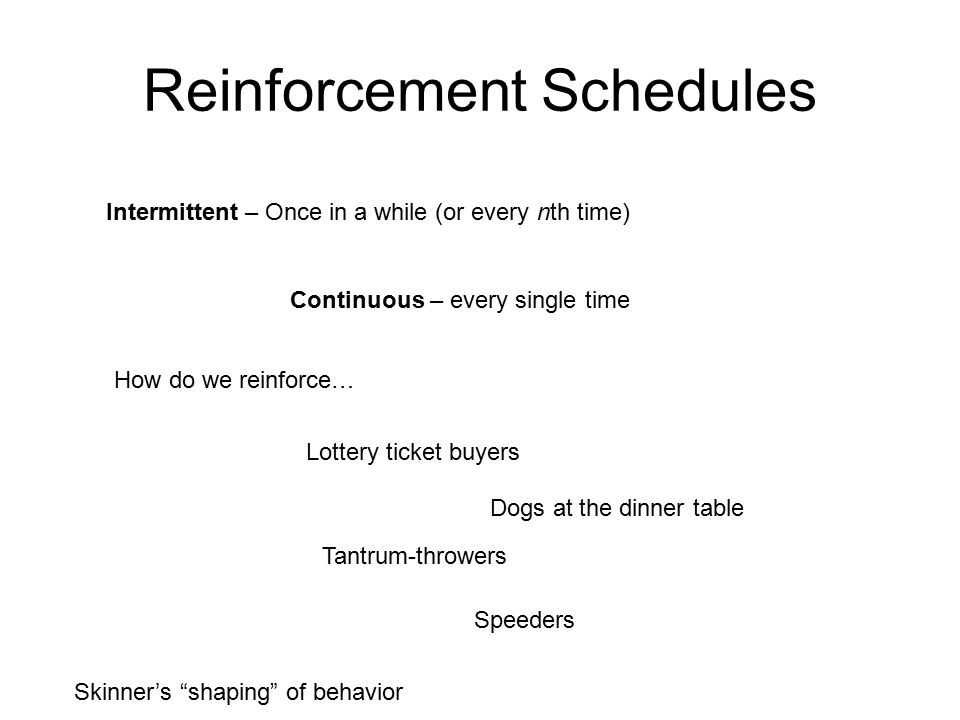 Reinforcement Schedules Intermittent – Once in a while (or every nth time) Continuous – every single time How do we reinforce… Lottery ticket buyers Dogs at the dinner table Tantrum-throwers Speeders Skinner's shaping of behavior