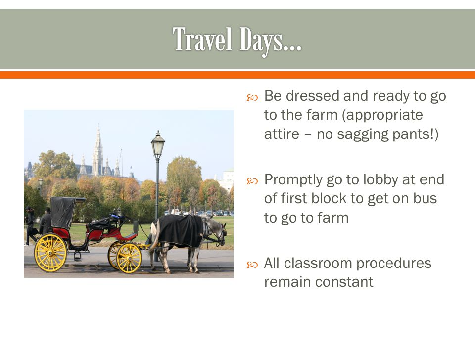  Be dressed and ready to go to the farm (appropriate attire – no sagging pants!)  Promptly go to lobby at end of first block to get on bus to go to farm  All classroom procedures remain constant