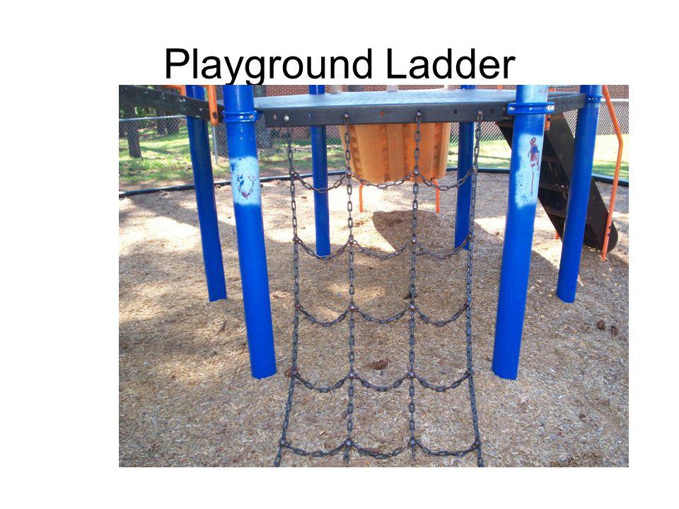 Playground Ladder