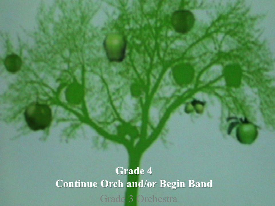 Grade 3 Orchestra