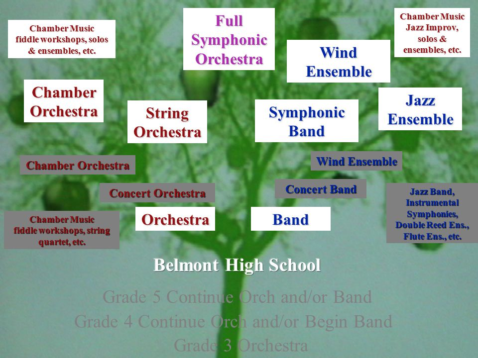 Grade 4 Continue Orch and/or Begin Band Grade 5 Continue Orch and/or Band Grade 3 Orchestra OrchestraBand Concert Orchestra Chamber Orchestra Concert Band Wind Ensemble Jazz Band, Instrumental Symphonies, Double Reed Ens., Flute Ens., etc.