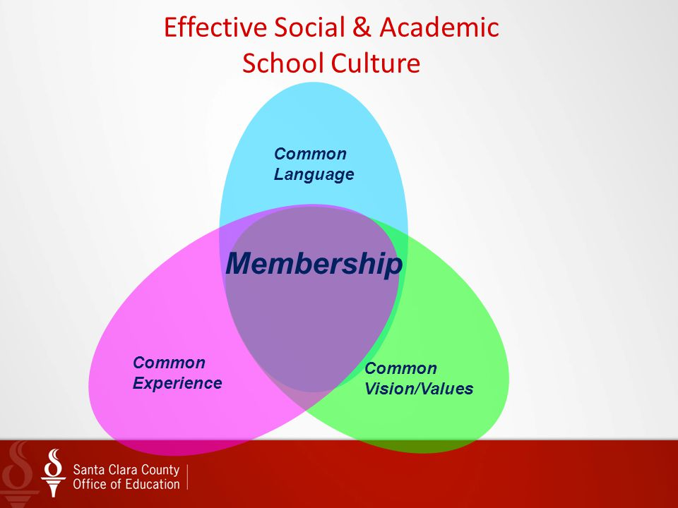 Effective Social & Academic School Culture Common Vision/Values Common Language Common Experience Membership