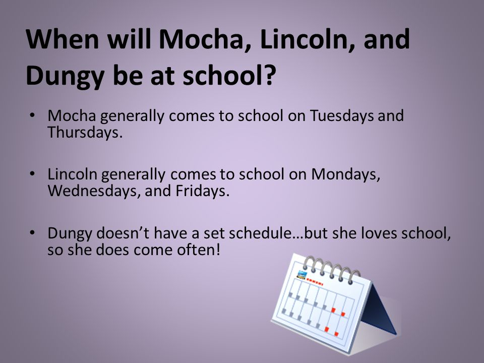 When will Mocha, Lincoln, and Dungy be at school.