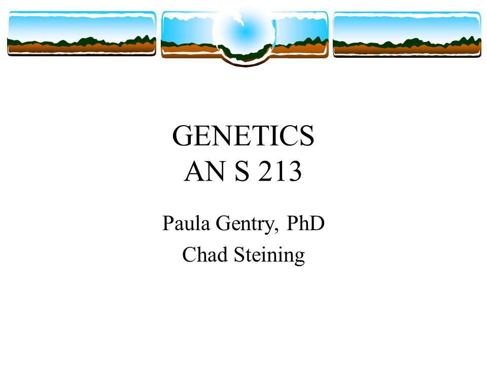 GENETICS AN S 213 Paula Gentry, PhD Chad Steining