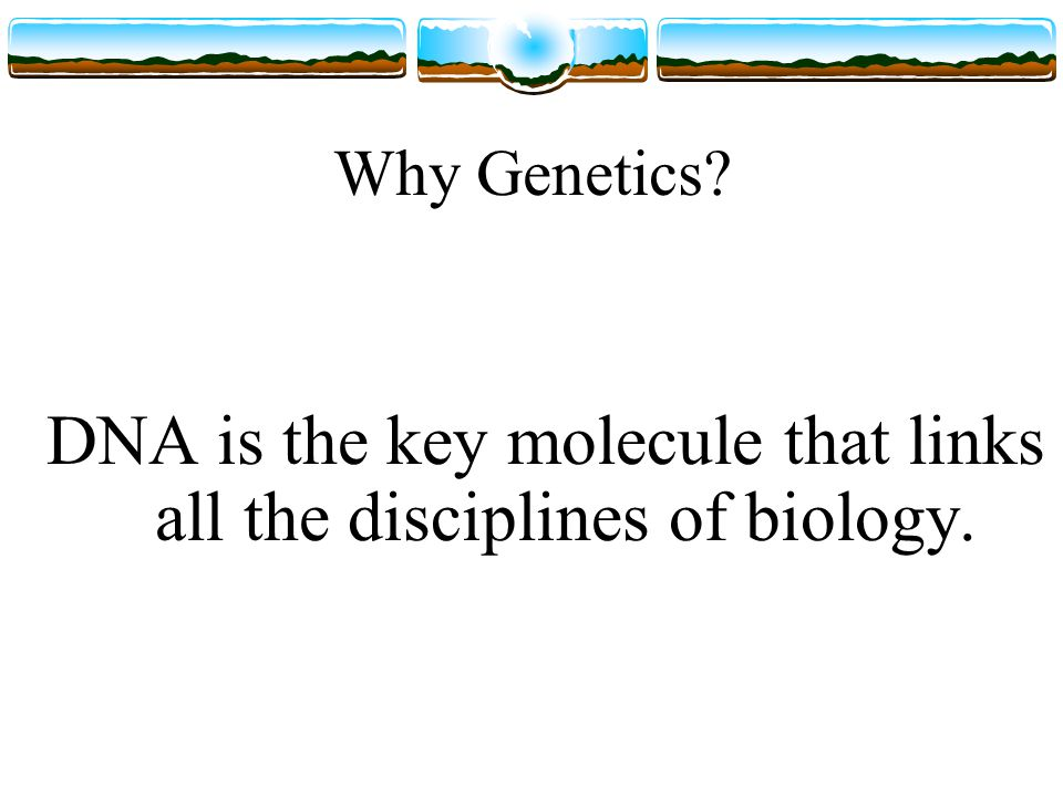 Why Genetics DNA is the key molecule that links all the disciplines of biology.